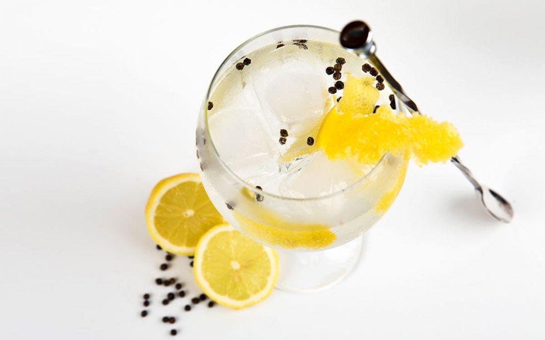 gin tonic con limón