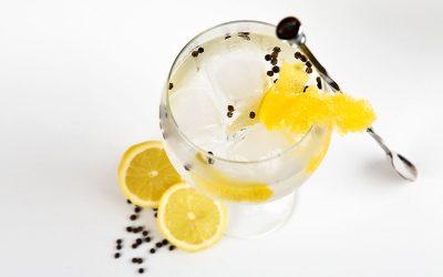 Cómo preparar el mejor Gin Tonic