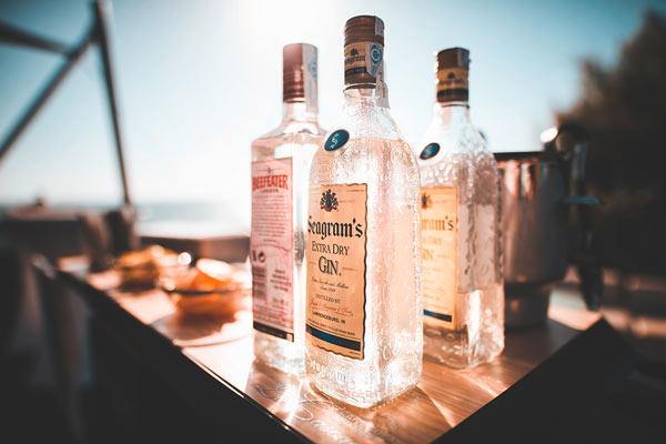ginebra para gin tonic